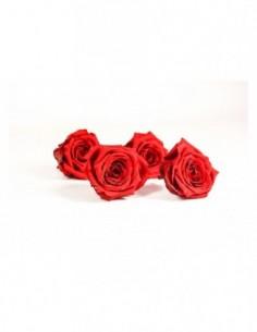 6 roses éternelles bouquet...