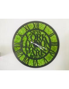 Horloge végétalisée Pendule...
